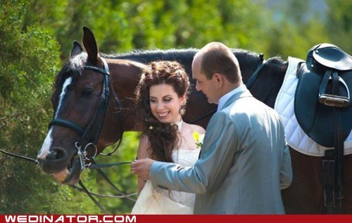 bride funny wedding photos groom horse smile - 5436265984
