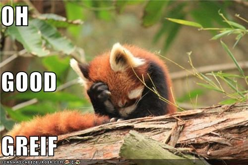 animals good grief oops red panda thats-a-bummer-man - 5436277760
