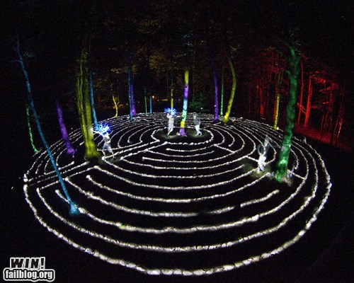 creepy design exposure Forest light light painting long exposure