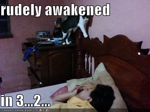 rudely awakened  in 3...2...