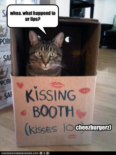 Cheezburger Image 5438855680