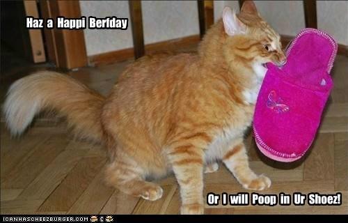 Haz a Happi Berfday Or I will Poop in Ur Shoez!