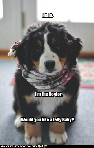 Hello. I'm the Dogtor. Would you like a Jelly Baby?
