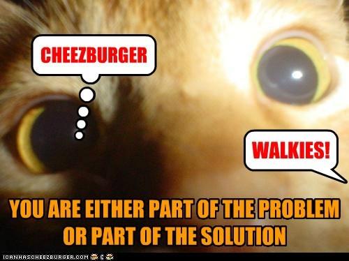 Cheezburger Image 5439634944