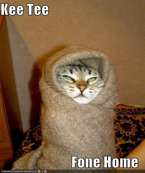 bundle caption captioned cat ET famous Movie nome phone pun quote recreation scene wrapped up