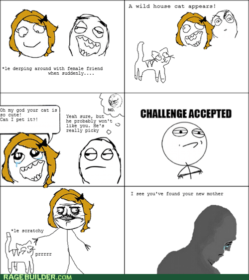 cat Challenge Accepted cute Rage Comics