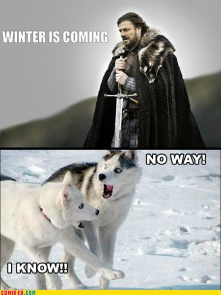best of week,cant-believe-it,ned,obvious,omg,TV,Winter Is Coming