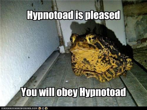caption,captioned,futurama,hypnotoad,obey,pleased,toad,will,you