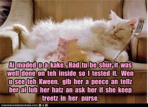 happy birthday meme of a white cat sleeping near a cake