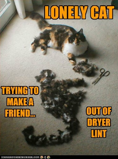 caption captioned cat dryer friend Hall of Fame lint lonely make material silhouette TLL trying weird - 5442619136