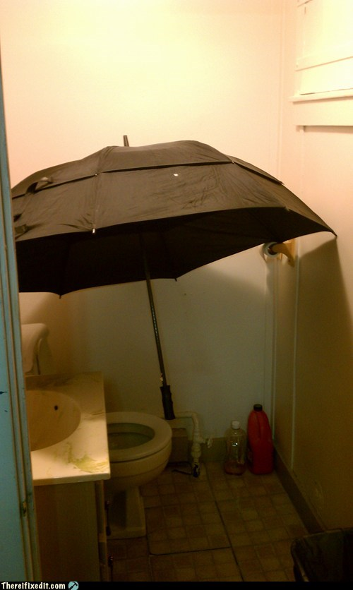 bathroom,dual use,plumbing,umbrella