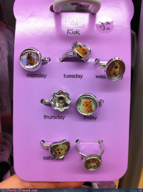cat rings gets me through the week ring of the day