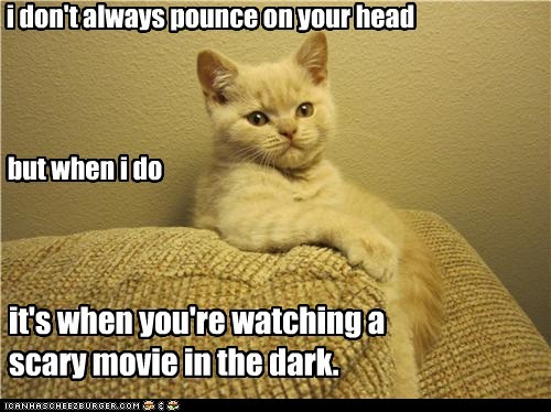 i don't always pounce on your head but when i do it's when you're watching a scary movie in the dark.