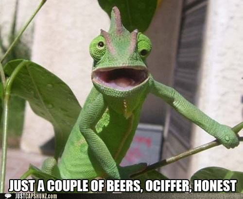 JUST A COUPLE OF BEERS, OCIFFER. HONEST