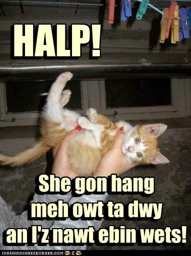 HALP! She gon hang meh owt ta dwy an I'z nawt ebin wets! She gon hang meh owt ta dwy an I'z nawt ebin wets! HALP!