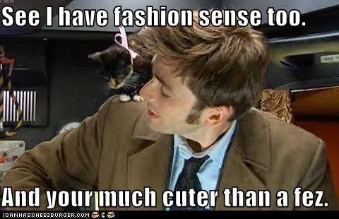 Cats cool cute David Tennant doctor who fashion FEZ kitten