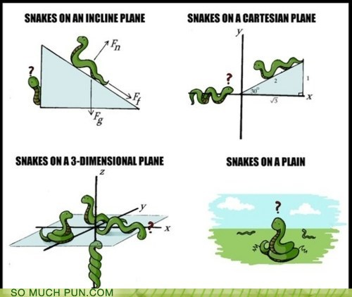 double meaning Hall of Fame literalism multiple meanings plane planes snake snakes snakes on a plane - 5443995904