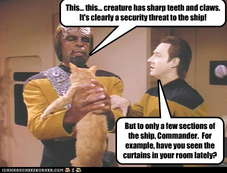 brent spiner,cat,data,Michael Dorn,spot,Star Trek,Worf