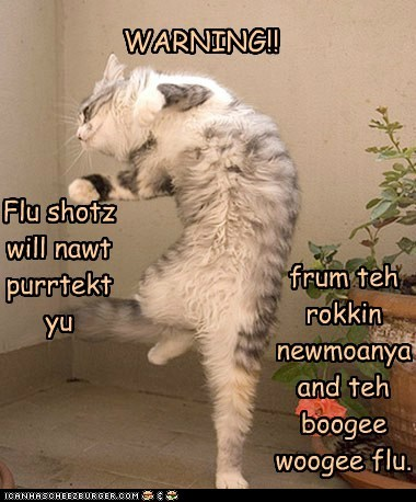 WARNING!! Flu shotz will nawt purrtekt yu frum teh rokkin newmoanya and teh boogee woogee flu.