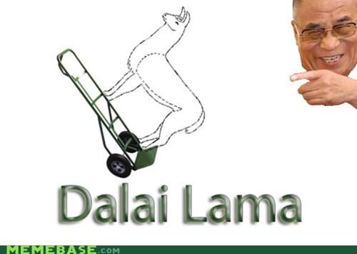 Dalai Lama dolly double meaning homophone homophones literalism llama - 5444494336