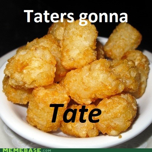 haters gonna hate i like mine with garlic wink potato side dishes Tate tater tots yum - 5444753408
