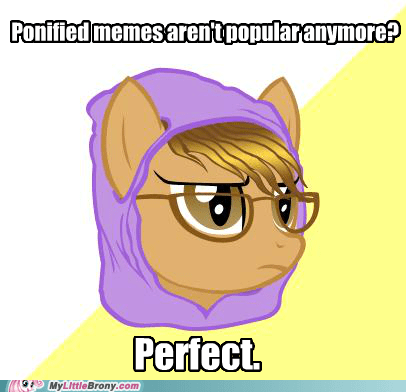 hipster cat hipster pony meme ponification ponify - 5444806400