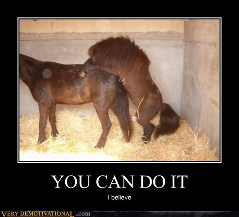 YOU CAN DO IT I believe
