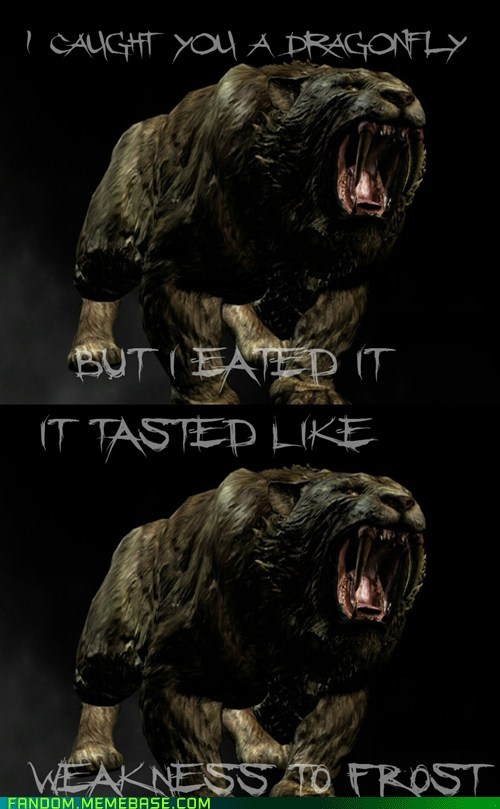 It Came From the Interwebz lolcats sabertooth Skyrim video games - 5445995520