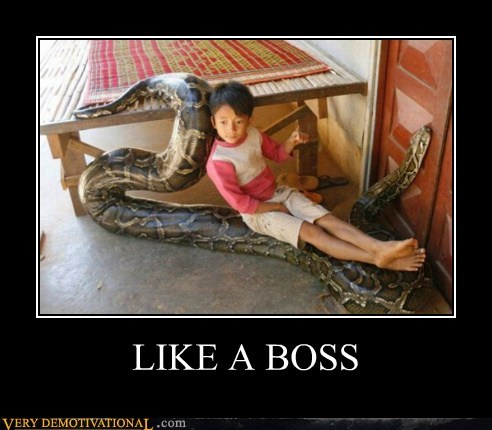 boss,kid,Pure Awesome,snake