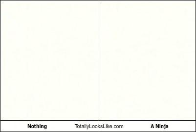 funny,ninja,TLL