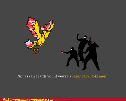 legendary pokemon Memes moltres ninjas truefacts - 5447691520