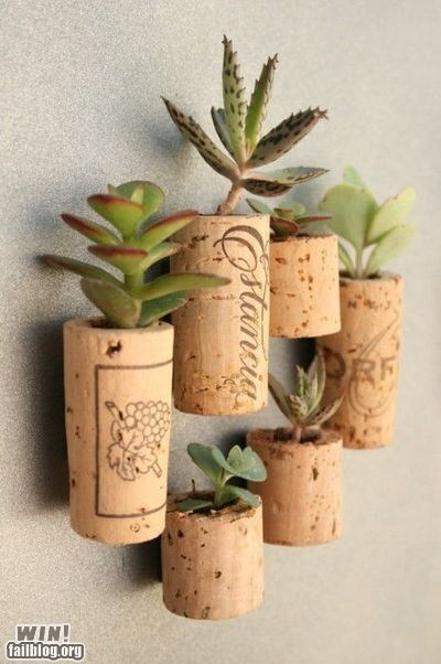 alcohol cactus cork design plant pot wine wine cork