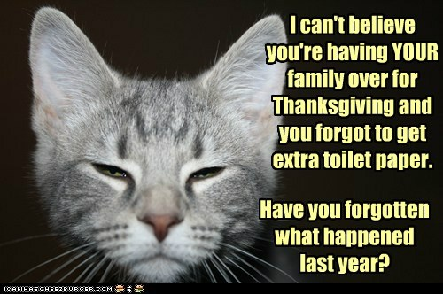 bad idea believe cant caption captioned cat disappointed do not want extra family forgot thanksgiving toilet paper upset - 5448281344