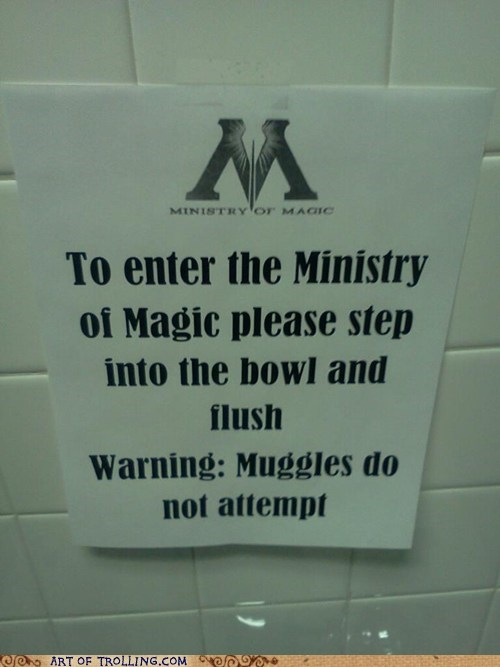 flush,IRL,ministry of magic,muggles