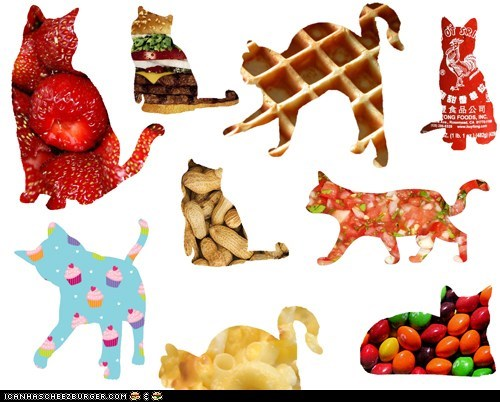 art food noms silly wallpaper wtf - 5448513536