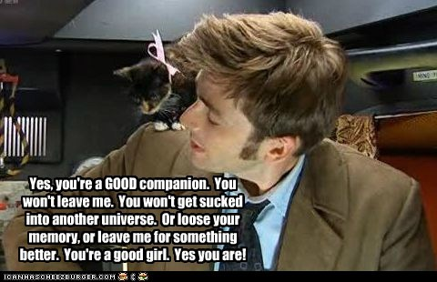 cat,companion,David Tennant,doctor who,good,kitty,the doctor