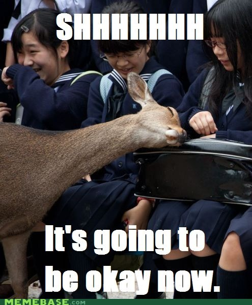 asians deer Memes Okay shhh - 5450341120