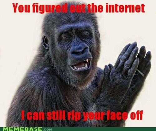 face,gorilla,internet,Memes,rip,violence