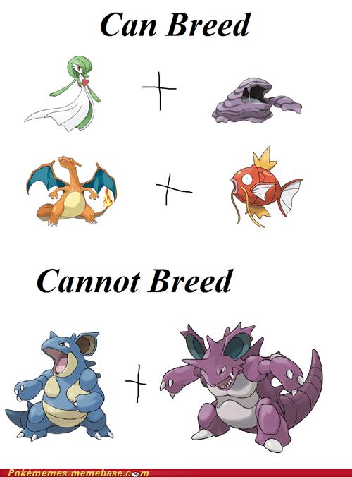 best of week breeding daycare Memes - 5450875392