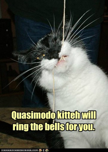 Quasimodo kitteh will ring the bells for you.