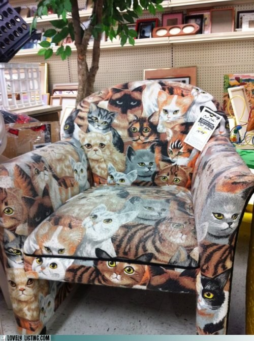 Cats,chair,print,upholstery