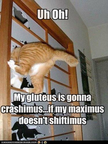 Uh Oh! My gluteus is gonna crashimus...if my maximus doesn't shiftimus