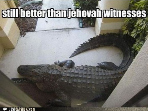 alligator,animals,jehovahs witnesses,porch