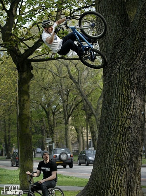bike,Gravity,gravity check,stunt,tree,trick,wait what