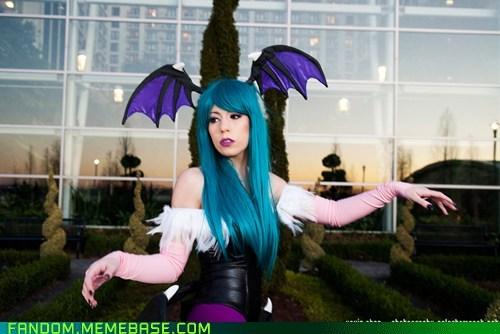 cosplay Darkstalkers video games - 5452424960