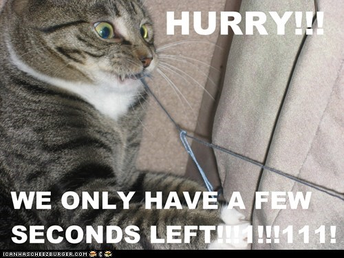 bomb,caption,captioned,cat,chewing,cutting,disarming,few,have,hurry,left,only,seconds,we,wire