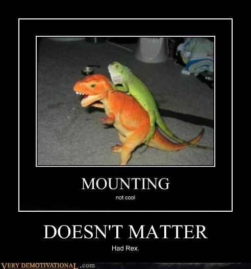 dinosaur,doesnt matter,hilarious,lizard,sexy times