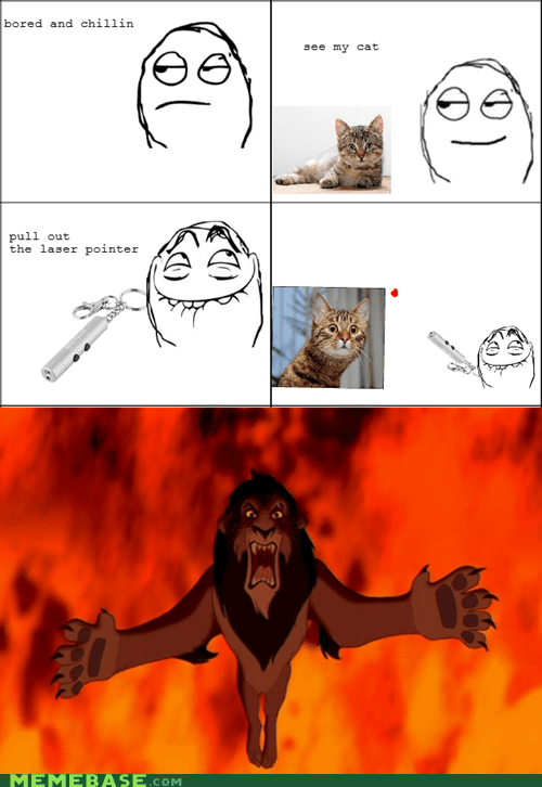 animemes Cats dot laser pointer pets Rage Comics scar world - 5452884480