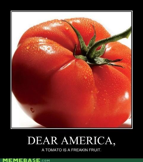 america fruit Memes tomato - 5453101312