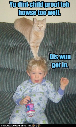 baby caption captioned cat child childproof didnt example house human intruder lolwut pointing proof tabby this one well - 5454566656